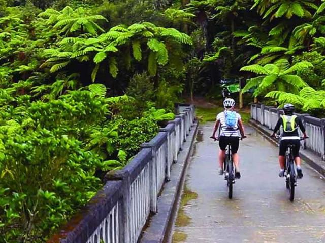 Bush & Bike